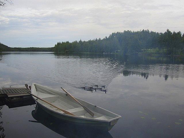 ducks boat