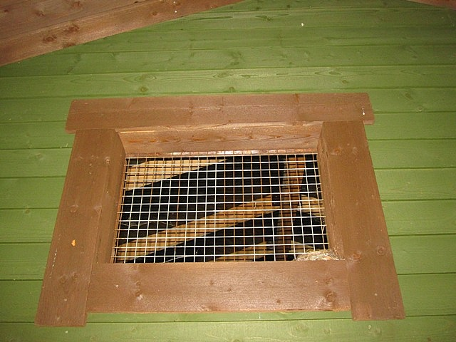nest window