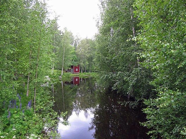 А сауны и окружающие их деревья отражались в спокойной воде