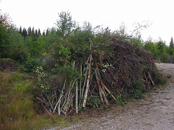 Над созданием последней я и работала все лето, расчищая лес и складывая мусор в кучи