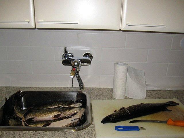 к разделке рыбы готов