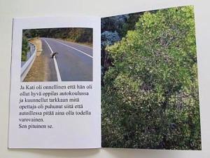 финская обложка внутри