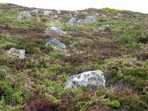 крупно камни Hill O Many Stanes