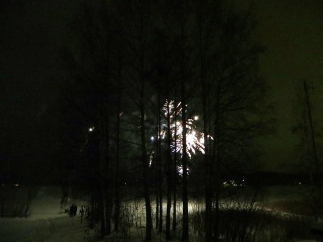 фейерверк за лесом на берегу озера