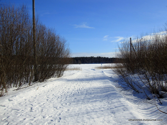 дорога на озеро и лыжня по берегу