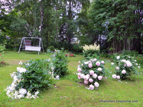 старые качели в саду