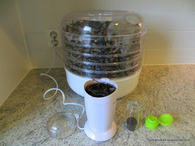 вороночник сухой немолотый в кофемолке и молотый в баночке для специй
