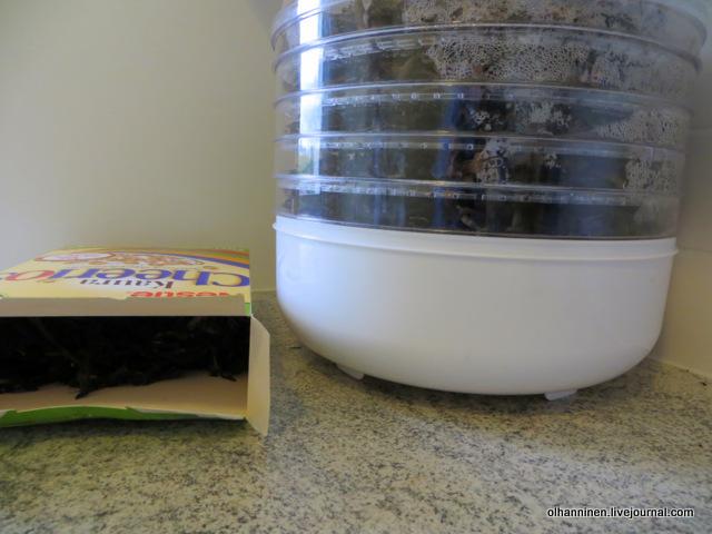 храню большую часть сухих грибов в картонной коробке