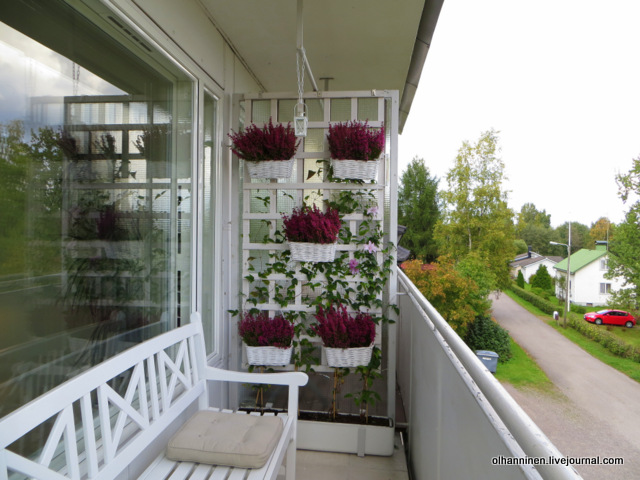 Варианты украшения балкона цветами на зиму - иногда я думаю.