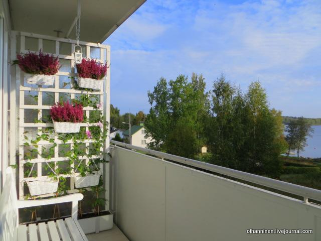 06 вереск на балконе, но не хватило еще 4 цветов