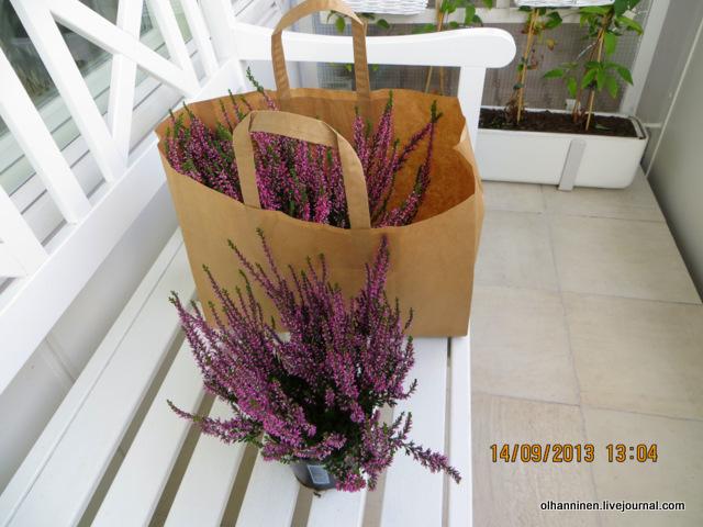 07 муж купил цветы
