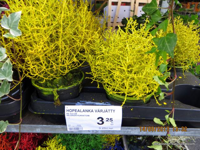 16 цена других цветов