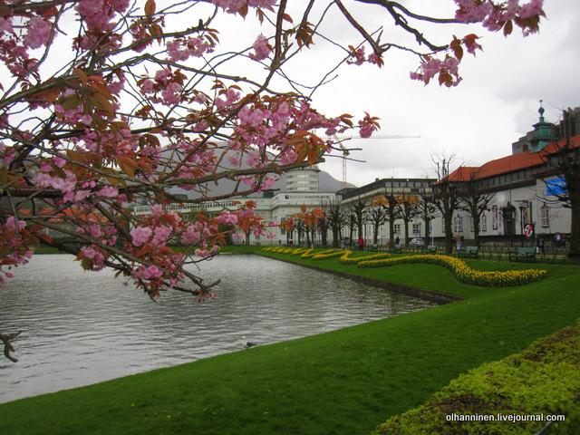 музей и озеро