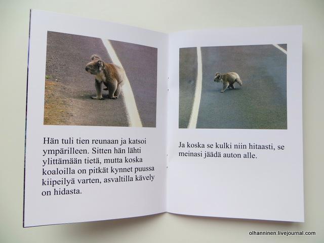 30 внутренние финские страницы про коалу