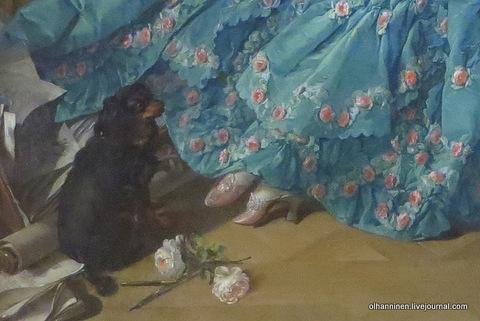 03 собачка, розы и свитки маркизы на полу
