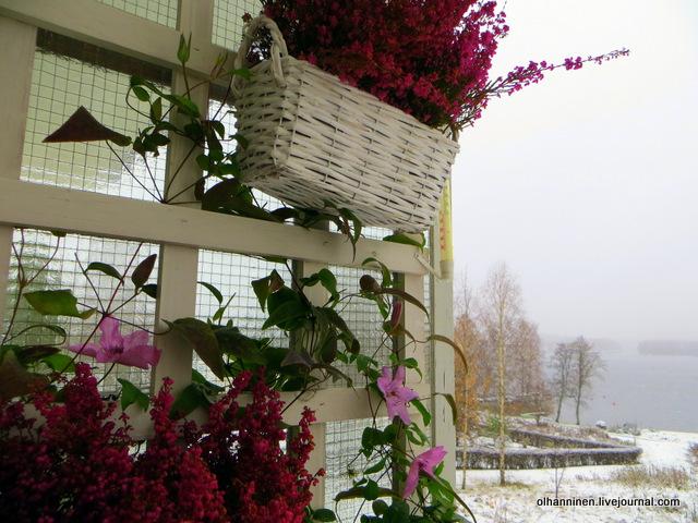 Варкаус осенью уже в снегу. обсуждение на liveinternet - рос.