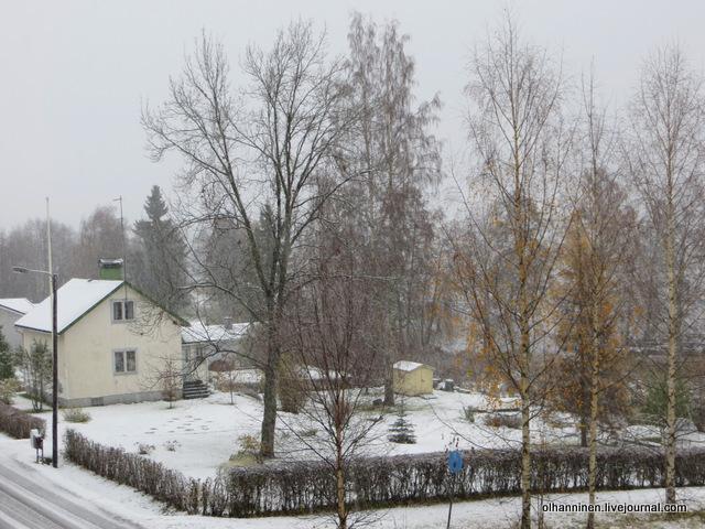 03 снег в соседском саду