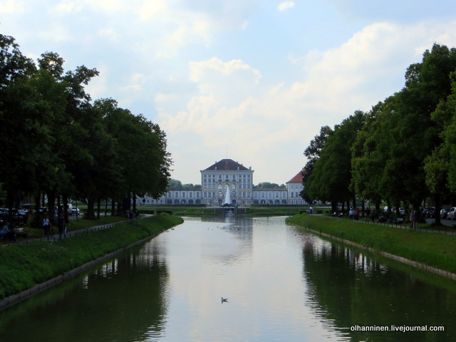 02 утка в канале напротив дворца