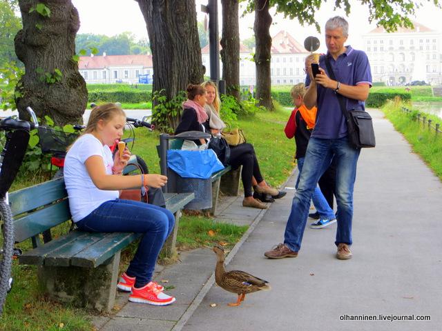 10 кормежка и фотографирование птиц