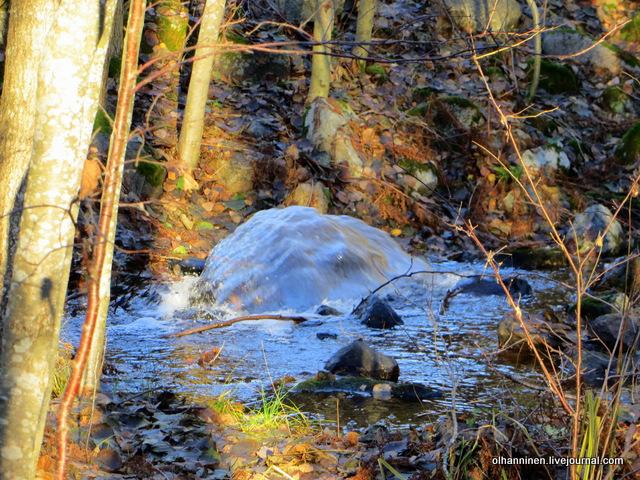 22 фонтан в лесу