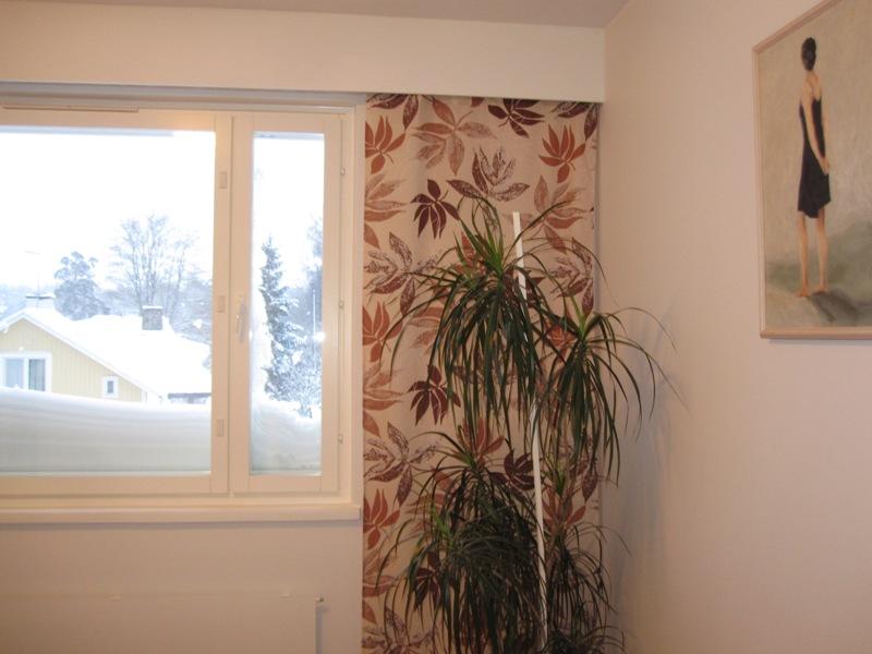 Пальма на фоне снега