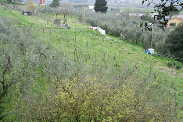 италия весна 2013 177