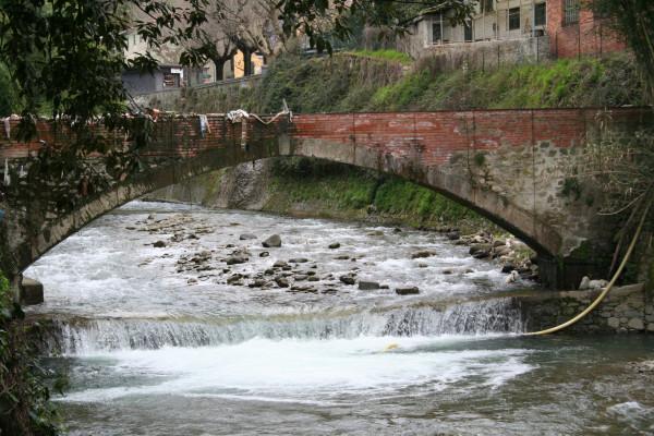 италия весна 2013 248