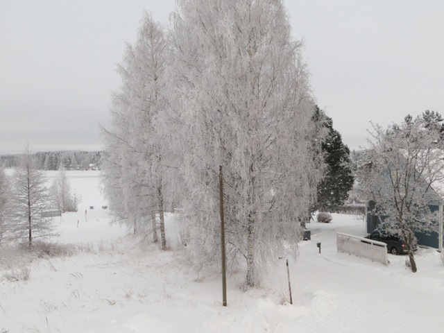 зима за окном