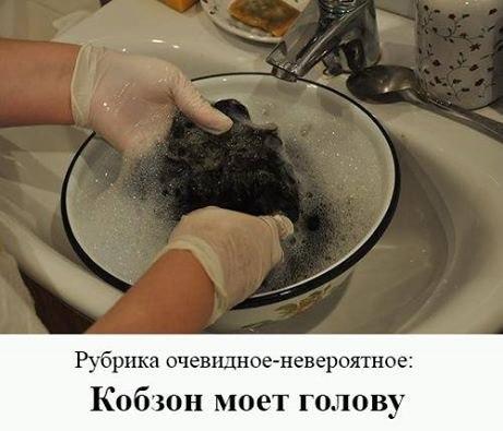 DJLzO_P2HkA