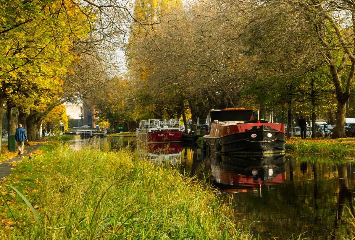 Городской канал Дублина в осенних красках.