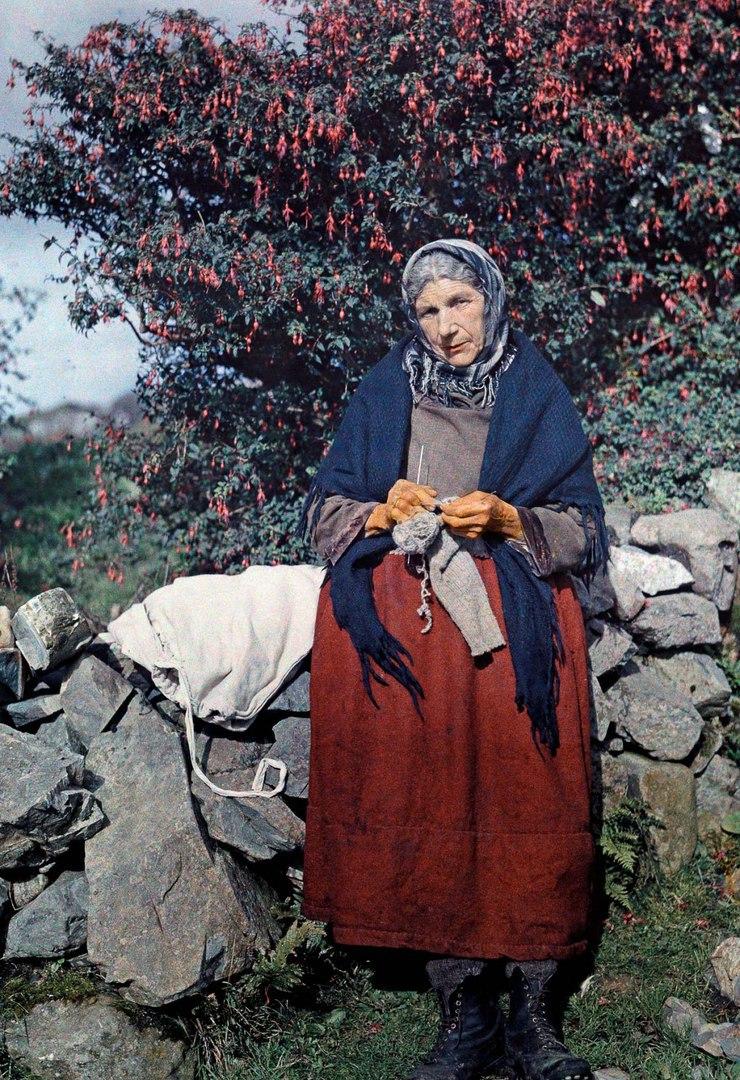 Женщина вяжет под деревом Фуксии.