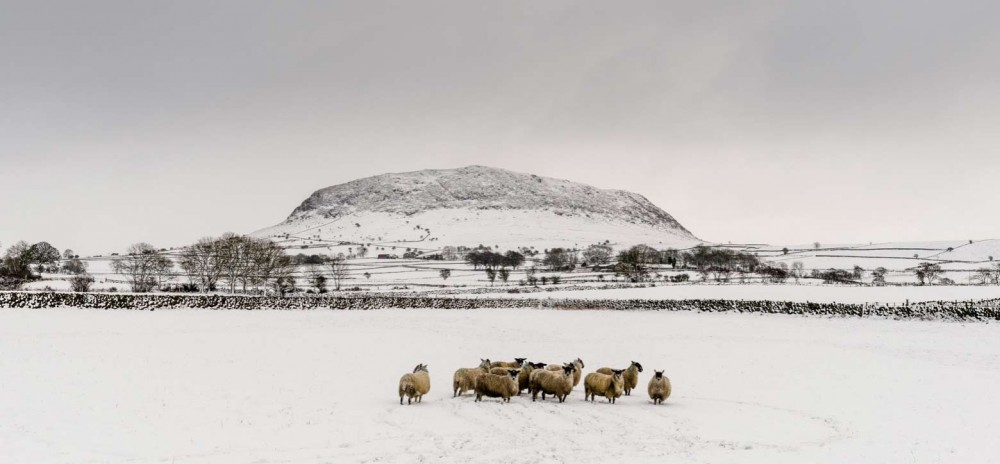 Slemish-County-Antrim-Northern-Ireland