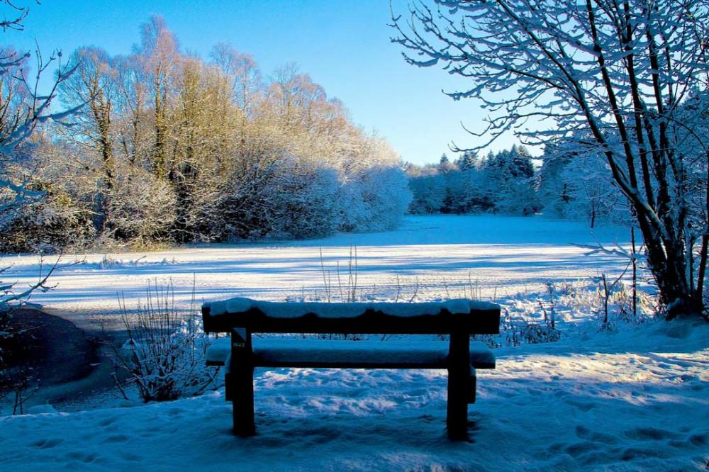 Одинокая лавочка в снегу.