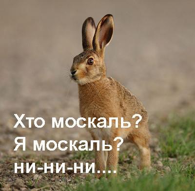 4 заяц не москаль