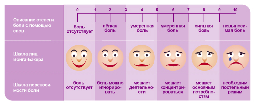 sapes_shema_2_ru
