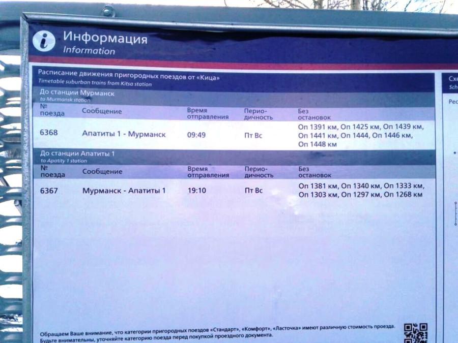 Кица_расписание