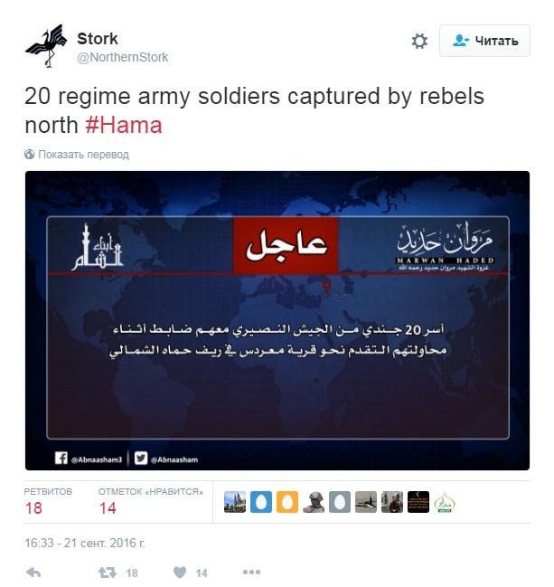 Сирияи война онлайн - Алеппо, Хама, ИГИЛ, ДАЕШ, твит.jpg