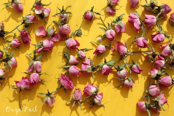 rosespinkyellow 1