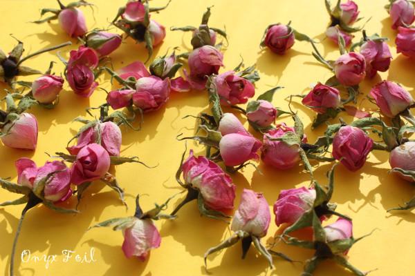rosespinkyellow 2