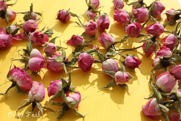 rosespinkyellow 3