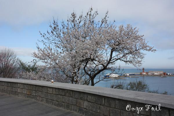 Весна 2014