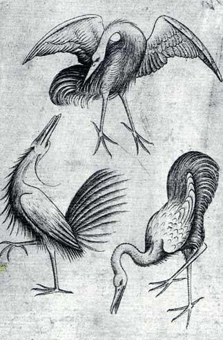 Vogel_Drei_(Meister_der_Spielkarten)