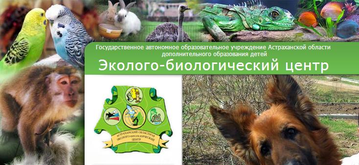 FireShot Screen Capture #140 - 'Эколого-биологический центр, История' - www_ast-eco_ru_index_php_id=5