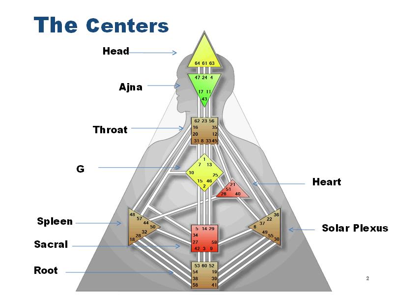 Определение дизайн человека
