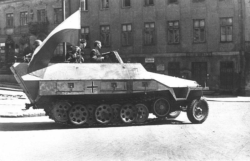 sdkfz251pol