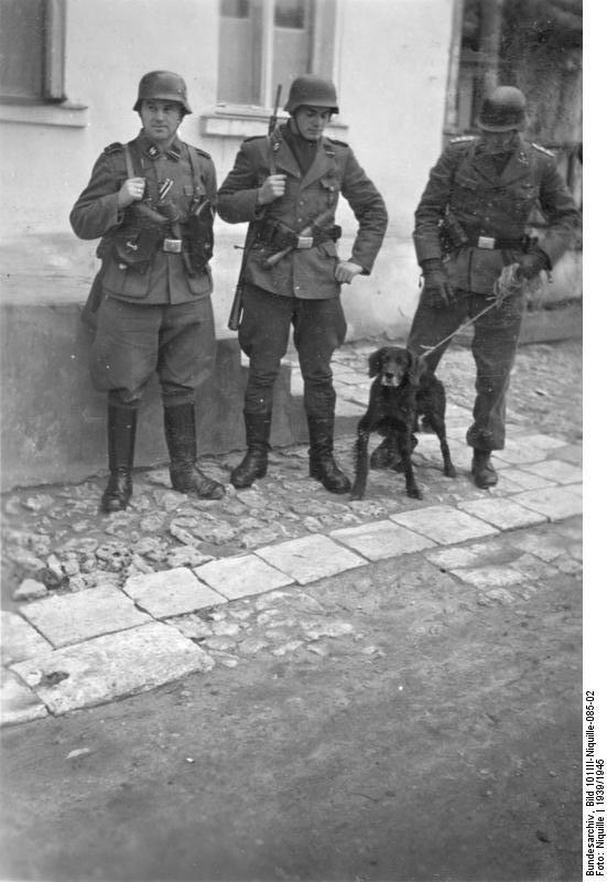 Bundesarchiv_Bild_101III-Niquille-085-02,_Bekämpfung_von_Partisanen