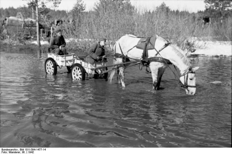 Bundesarchiv_Bild_101I-394-1477-14,_Russland,_Soldaten_in_Anhänger,_Pferd