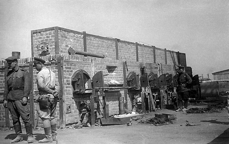 Verbrennungsöfen_Majdanek_-_Fotothek_df_pk_0000125_003.jpg