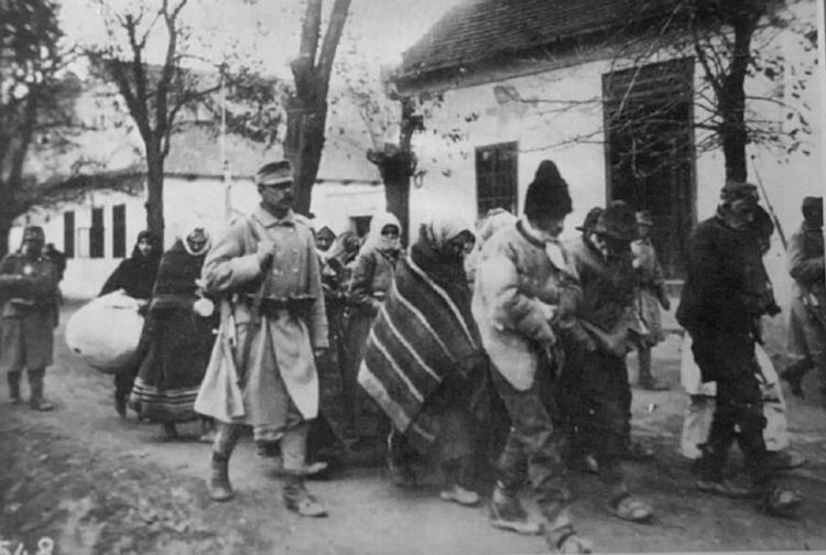 """Настоящие  """"Похождения бравого солдата Швейка"""". 1914-1921 г."""
