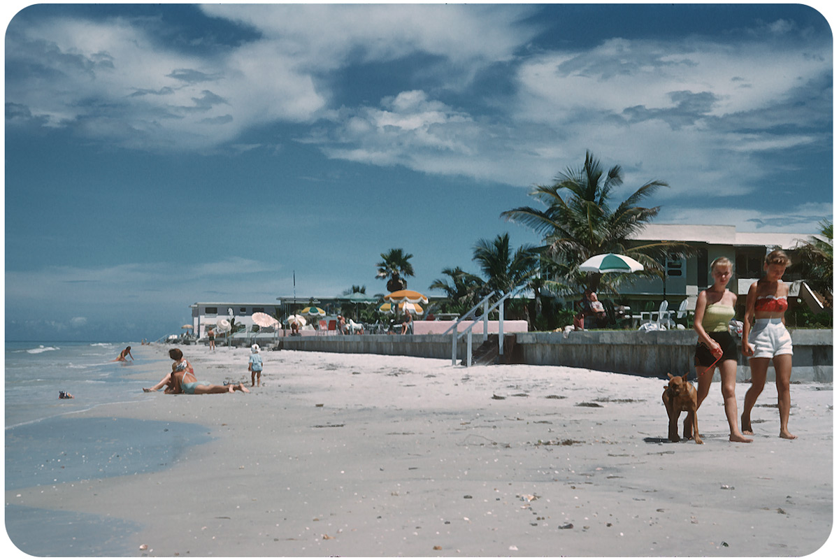 Beautiful Life of Florida in the 1950s (1).jpg